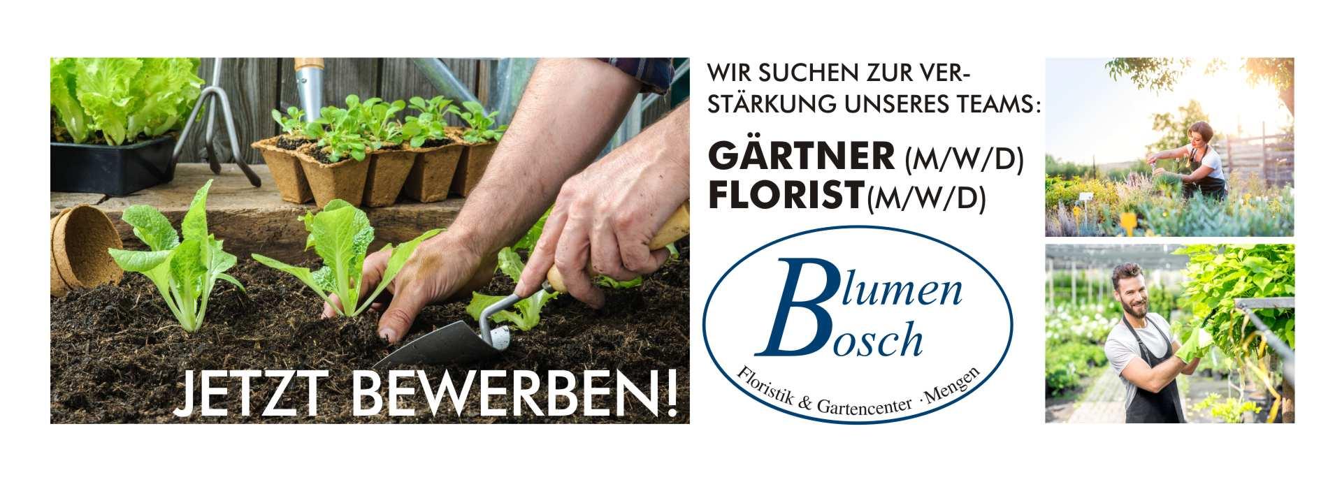 BlumenBosch-jobs-06-20
