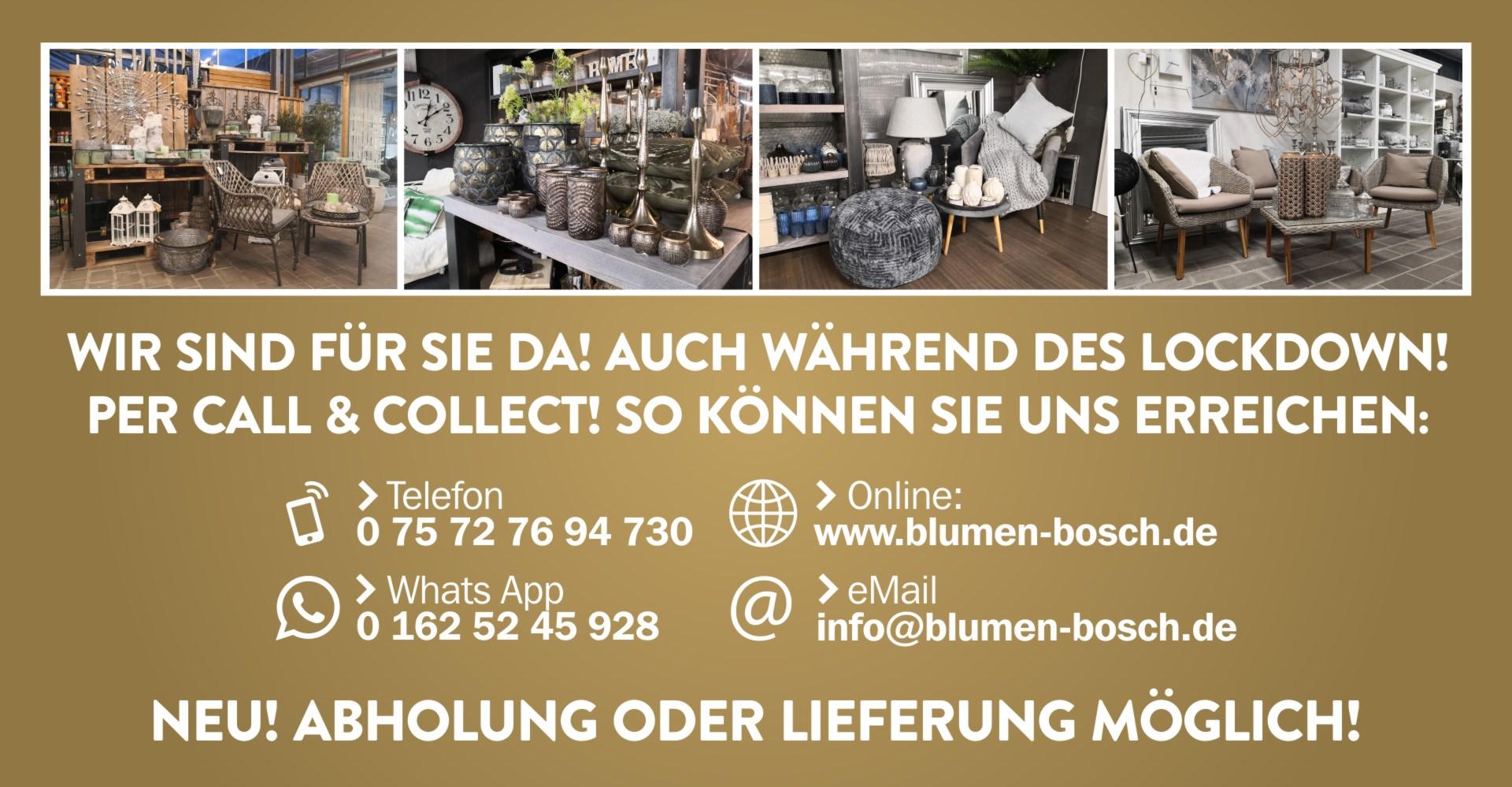 AB SOFORT CALL & COLLECT MIT ABHOLUNG / LIEFERUNG MÖGLICH!